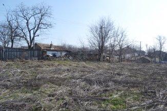vanzare teren intravilan de la agentie imobiliara cu suprafata de 1000 mp, comuna Topalu