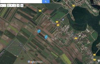 proprietar vand Teren agricol in suprafata de 3045 metri patrati, localitatea Samurcasi