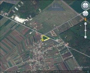 proprietar vand teren intravilan in suprafata de 15719 metri patrati, localitatea Tartasesti