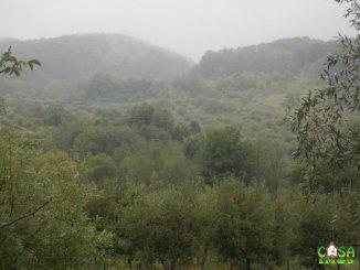 10240 mp teren intravilan de vanzare, Rau Alb de Jos Dambovita
