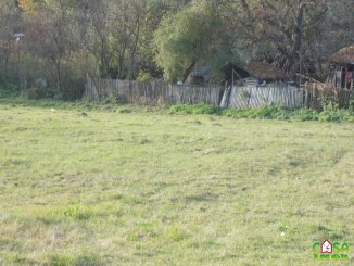 vanzare 3000 metri patrati teren intravilan, localitatea Valea Lunga Cricov