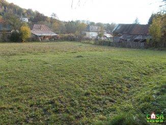3000 mp teren intravilan de vanzare, Valea Lunga Cricov  Dambovita