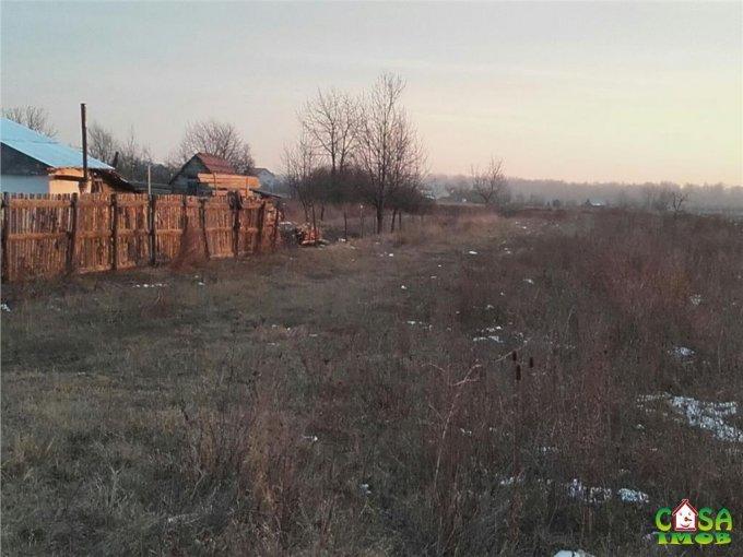 Teren intravilan de vanzare direct de la agentie imobiliara, in Dragomiresti, cu 16.500 euro. Suprafata de teren 3284 metri patrati cu deschidere de 15 metri.