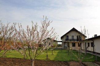 vanzare casa cu 5 camere, comuna Adunatii Copaceni, suprafata utila 248 mp