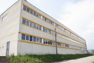 Spatiu industrial de vanzare, 135000 metri patrati utili, in Pricaz Hunedoara