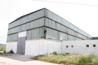 dezvoltator imobiliar inchiriez Spatiu industrial camere, 1950 metri patrati, orasul Orastie