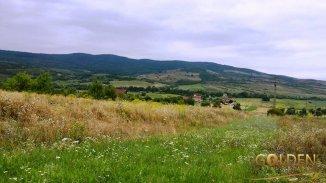 vanzare 4996 metri patrati teren agricol extravilan, localitatea Barsau