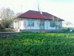 vanzare casa cu 4 camere, comuna Movilita, suprafata utila 2000 mp