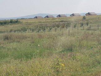vanzare 10000 metri patrati teren intravilan, zona Miroslava, orasul Iasi