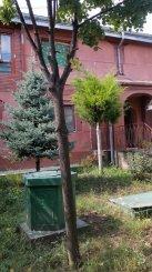 vanzare vila cu 1 etaj, 5 camere, zona Miroslava, orasul Iasi, suprafata utila 190 mp
