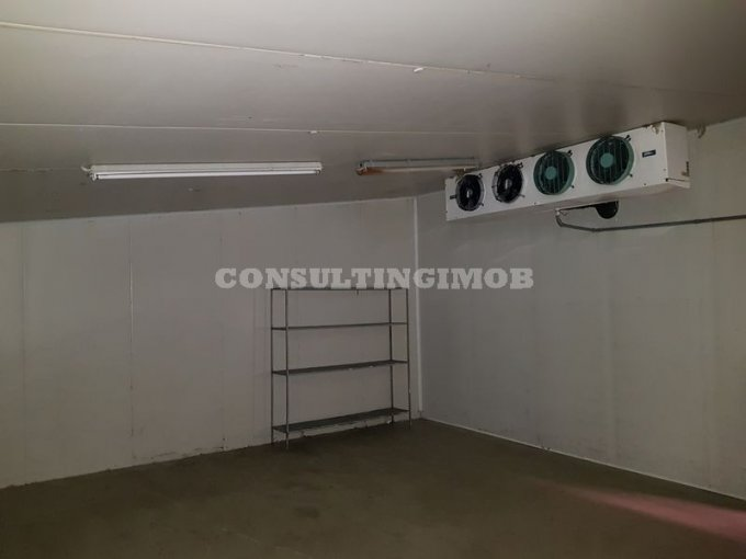 Domnesti Spatiu industrial de inchiriat cu 1 incapere, cu 3 grupuri sanitare, suprafata 2000 mp. Pret: 7.200 euro. Amplasament: Constructie Independenta. Utilitati: Internet, Gaze, Curent electric 220V, Curent electric 380V, Apa, Canalizare. Inaltime: 6
