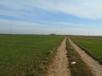 vanzare 12000 metri patrati teren agricol extravilan, comuna Vidra