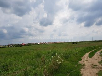 agentie imobiliara vand Teren agricol in suprafata de 10000 metri patrati, comuna Vidra