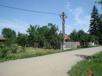 2950 mp teren intravilan de vanzare, Dascalu Ilfov