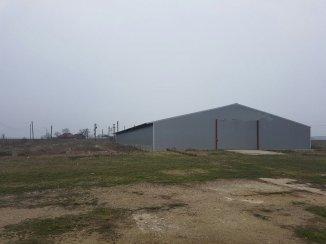 vanzare Spatiu industrial 1300 mp, 1 grup sanitar, comuna Punghina