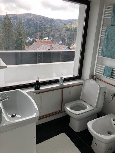 vanzare Duplex Busteni cu 2 camere, cu 1 grup sanitar, suprafata utila 38 mp. Pret: 41.000 euro. Incalzire: Centrala proprie a locuintei.