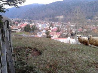 1160 mp teren intravilan de vanzare, in zona Centru, Busteni Prahova