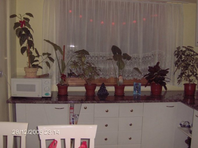vanzare apartament cu 4 camere, semidecomandata, in zona Central, comuna Tasnad