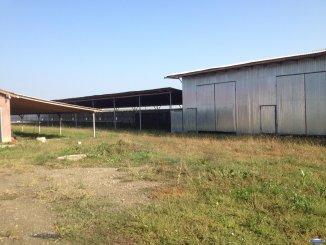 agentie imobiliara vand Spatiu industrial 3 camere, 1000 metri patrati, orasul Satu Mare