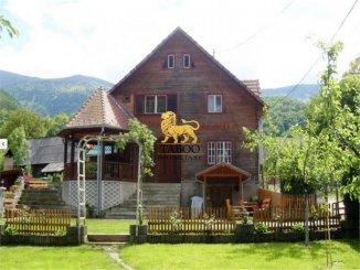 vanzare 980 metri patrati proprietate speciala, comuna Sadu