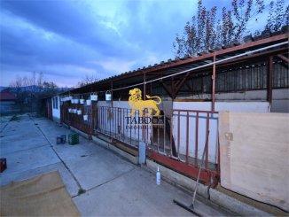 vanzare Spatiu comercial 450 mp cu 12 incaperi, 4 grupuri sanitare, comuna Cristian