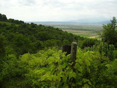 teren agricol vanzare de 1200 metri patrati, extravilan. 10.000 euro. Clasa fertilitate: I. Destinatie: Vacanta, Agricultura. Teren Cristian  Sibiu