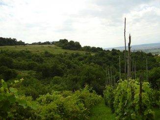 vanzare teren extravilan agricol de la agentie imobiliara cu suprafata de 1200 mp, comuna Cristian