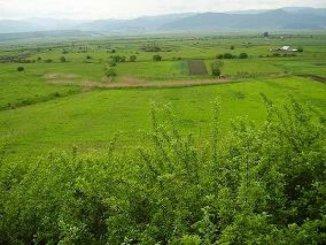 vanzare teren extravilan agricol de la agentie imobiliara cu suprafata de 12000 mp, in zona Aeroport, orasul Sibiu