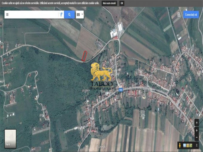 Teren intravilan de vanzare in Daia. Suprafata terenului 1100 metri patrati, deschidere 20 metri. Pret: 12.500 euro.