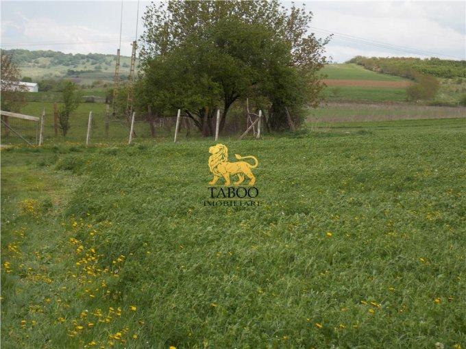 Teren vanzare de 10000 metri patrati, intravilan. 110.000 euro. Teren  Sura Mare  Sibiu