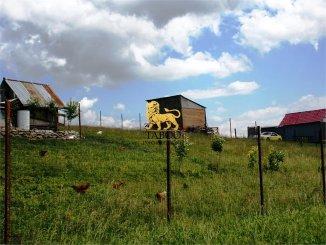 agentie imobiliara vand teren intravilan in suprafata de 956 metri patrati, comuna Sura Mare