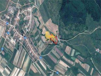 de vanzare teren intravilan de 19600 m<sup>2</sup> in daia