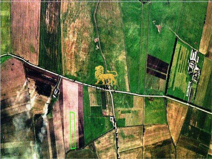 Teren vanzare de 14500 metri patrati, intravilan. 290.000 euro. Teren  Sibiu