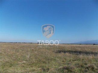 5000 mp teren intravilan de vanzare, Avrig Sibiu