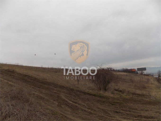 Teren intravilan de vanzare in Sura Mare. Suprafata terenului 1000 metri patrati, deschidere 20 metri. Pret: 25.000 euro.