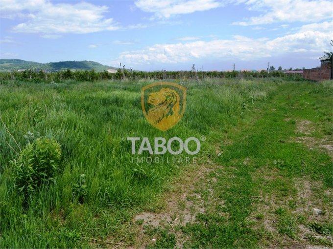 Teren vanzare de 850 metri patrati, intravilan. 76.500 euro. Teren  Terezian Sibiu