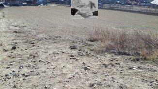 vanzare teren intravilan de la agentie imobiliara cu suprafata de 1200 mp, comuna Sura Mare