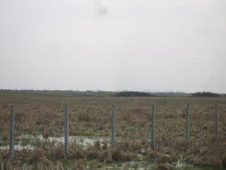vanzare teren intravilan de la proprietar cu suprafata de 22053 mp, comuna Sacalaz