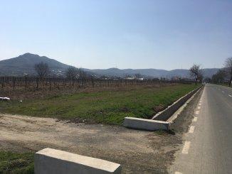 vanzare teren extravilan agricol de la proprietar cu suprafata de 1200 mp, comuna Niculitel