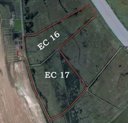 proprietar vand Teren agricol in suprafata de 7360000 metri patrati, comuna C.A. Rosetti