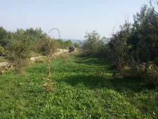 proprietar vand teren intravilan in suprafata de 3000 metri patrati, amplasat in zona Dealul Malului, orasul Ramnicu Valcea